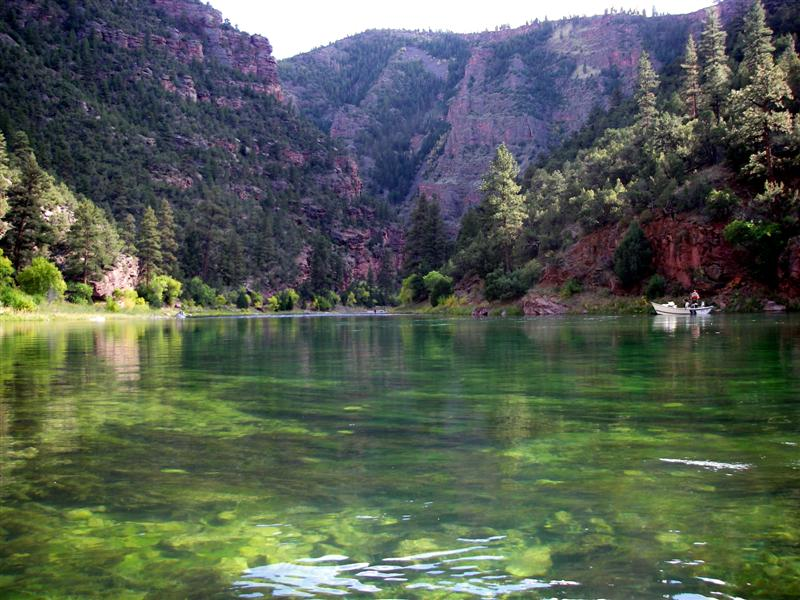 Green river 39 08 flaming gorge dam to little hole for Green river utah fishing report