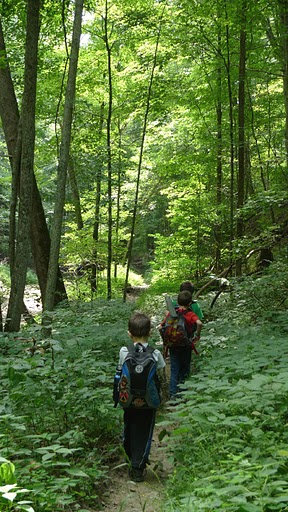 Trip Report My kids first backpacking trip is coming up ...