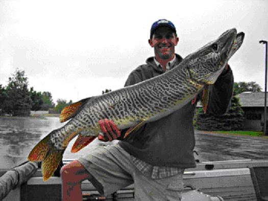 New state record tiger muskie at pineview dam for Tiger muskie fishing