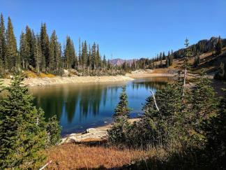 Name:  REd Pine Lake.jpg Views: 123 Size:  20.2 KB
