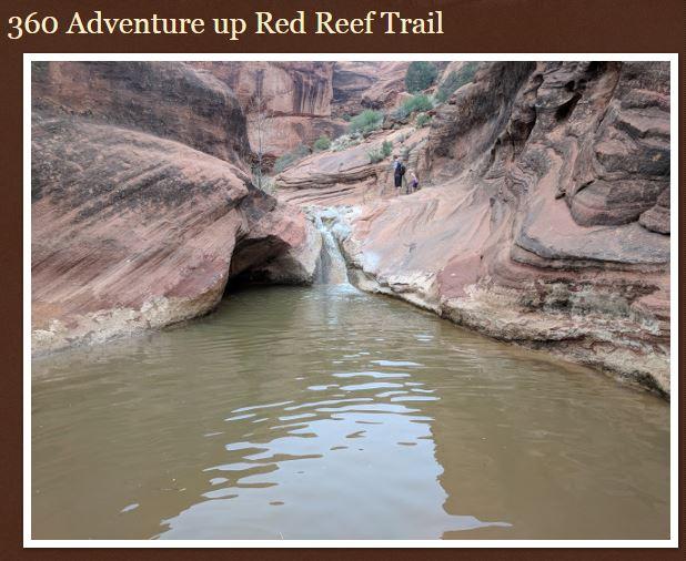 Name:  Red_Reef_Trail_Southern_Utah_Hurricane_ShaunasAdventures.JPG Views: 110 Size:  68.6 KB