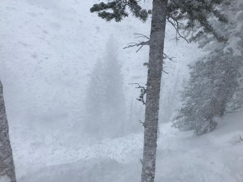 Name:  snow.jpg Views: 98 Size:  57.5 KB