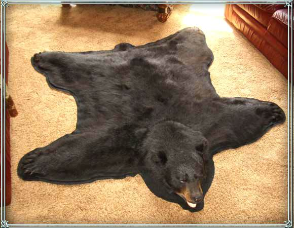 Name:  bear-fur-rug-bear-skin-rug.jpg