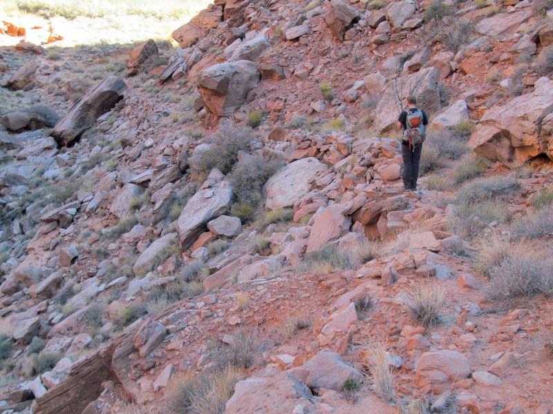 Name:  Lower Wolverton Canyon Trail.JPG Views: 138 Size:  185.7 KB