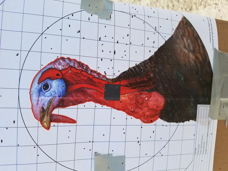Name:  Turkey 2.jpg Views: 154 Size:  64.6 KB