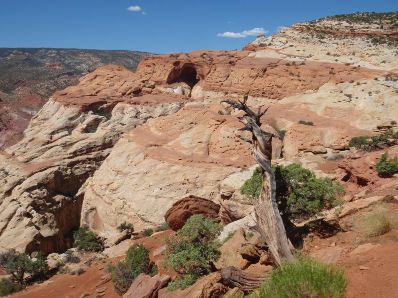 Name:  Cassidy Canyon 00&#.jpg