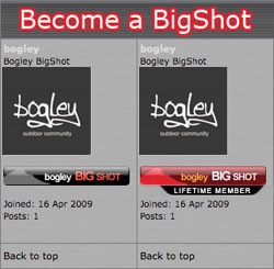Bogley BigShots